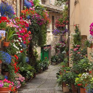 15条适合约会的浪漫街道