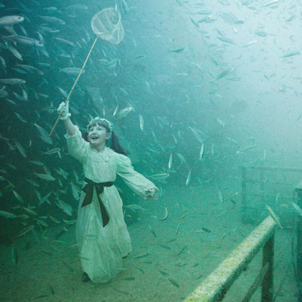 Life below the surface , 这是一次水下艺术之旅