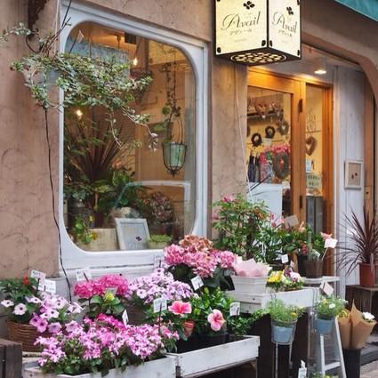 每个女孩都想有一家自己的花店