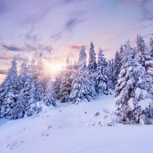 好好利用雪景,拍一组另类的婚纱照吧