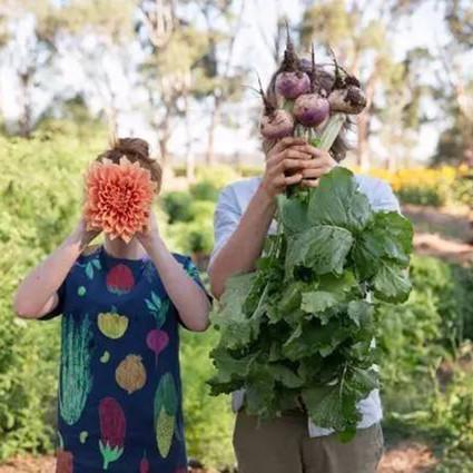 下半生,和爱的人一起养花种菜可好?