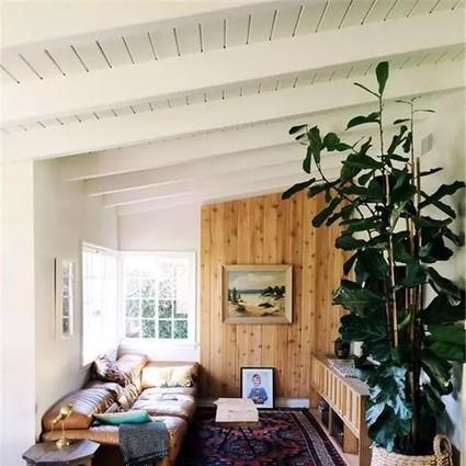 不只是日式家居风格才有原木元素