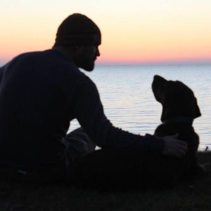 一只生命即将终结的猎犬,却得到主人环游世界的爱