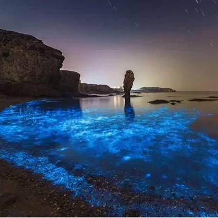 繁花、星空、荧光海…这个在杭州不远处的梦幻海岛,惊艳了5月初夏!