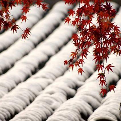 一位上海女医生,用2年拍下中国最美二十四节气,选入了联合国教科文视频,让二十四节气成功申遗!