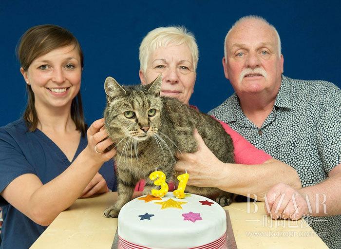 31-year-old-cat-nutmeg-8