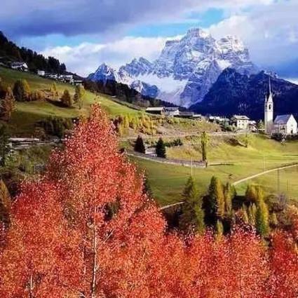 原来广东也有秋天!最美省道自驾寻秋,金杏、红枫、草原…比新疆内蒙更好玩