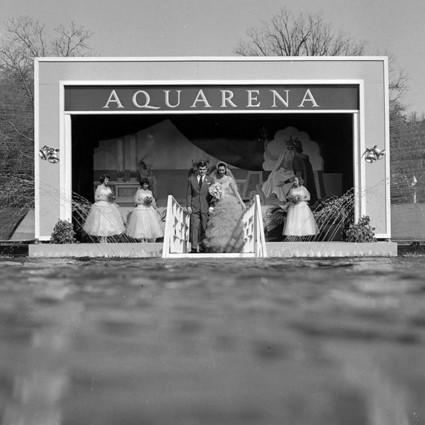 上世纪的水下婚礼,愿鱼儿见证他们爱情