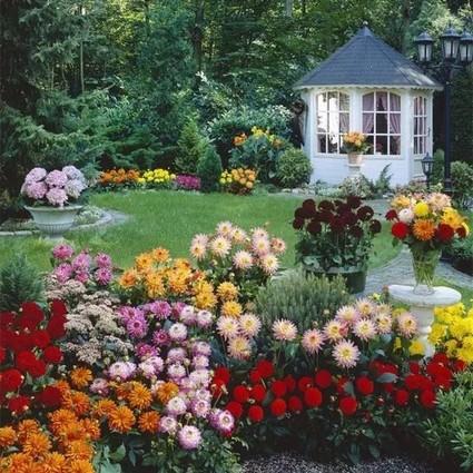 平凡如她们,用花草把日子装扮得五彩缤纷