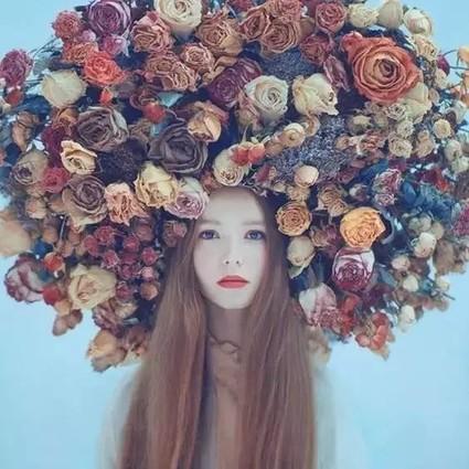 种了这么多年的花,花儿们的梦想你知道吗