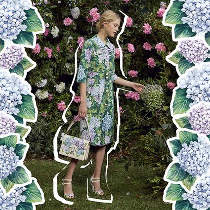 全新Ortensia女士系列——走进Dolce&Gabbana的夏日花园