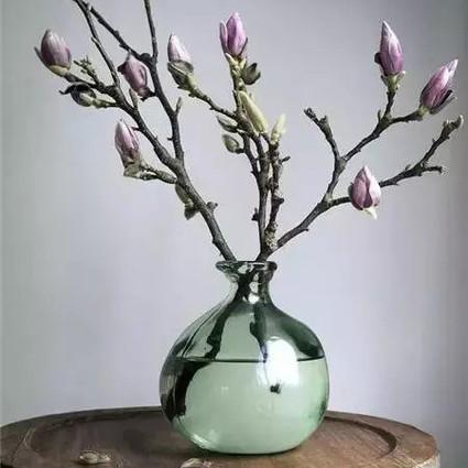 15种适合现在插的花,把春天带回家