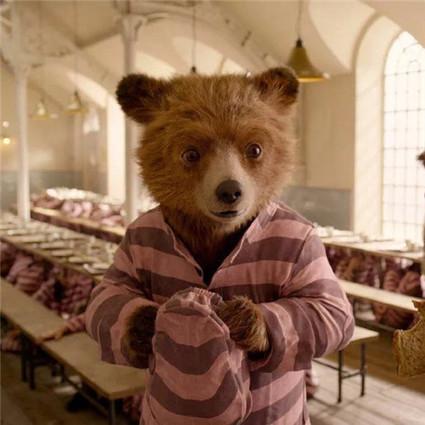 杜江霍思燕来为《帕丁顿熊2》打CALL,却没想到小熊最后栽在嗯哼大王手里!