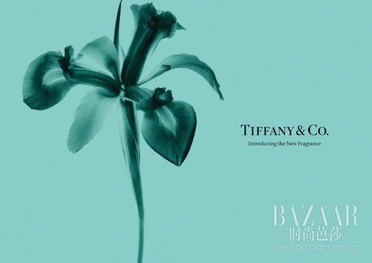 Tiffany & Co. First Fragrance - Iris Visual DP (1)