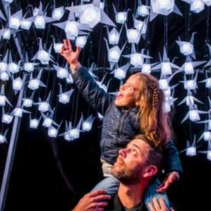 2018年缤纷悉尼灯光音乐节熄灯