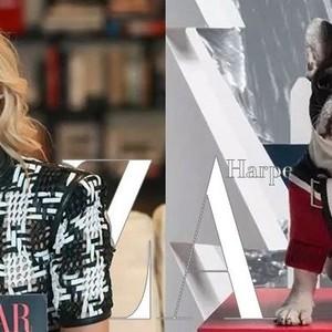每周时报 | 宇博来上海了!Moncler为狗狗们做好了过冬的羽绒服