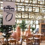 全世界最时髦的咖啡店是哪家?【芭莎女孩不认输】