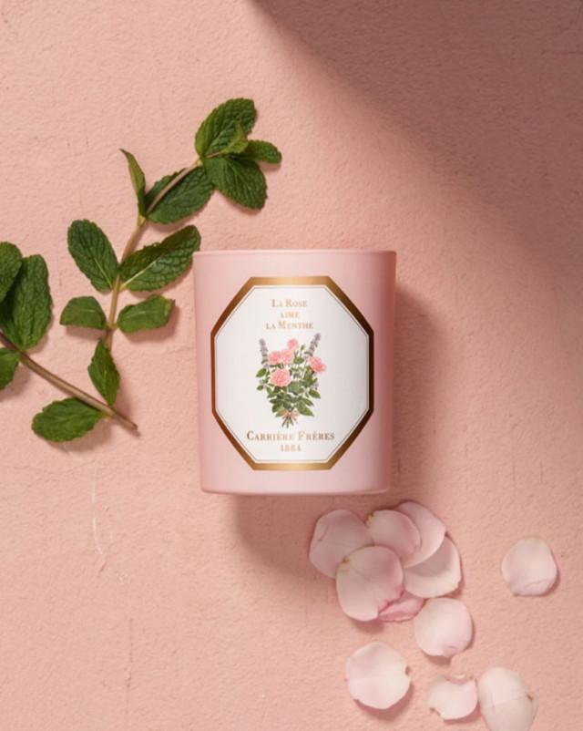 薄荷玫瑰之恋,开启春天的嗅觉之旅