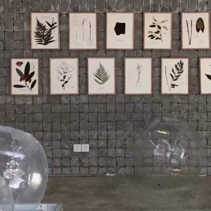 第二届运气艺术节顺利开幕:艺术与实验的跨界感知