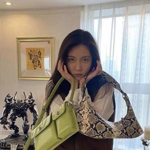 女明星在线求助网友选包?因为这些小众包包真的太美了!