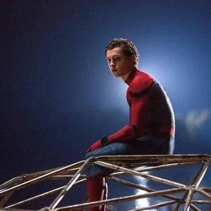 没有蜘蛛侠的滤镜,我更喜欢他了